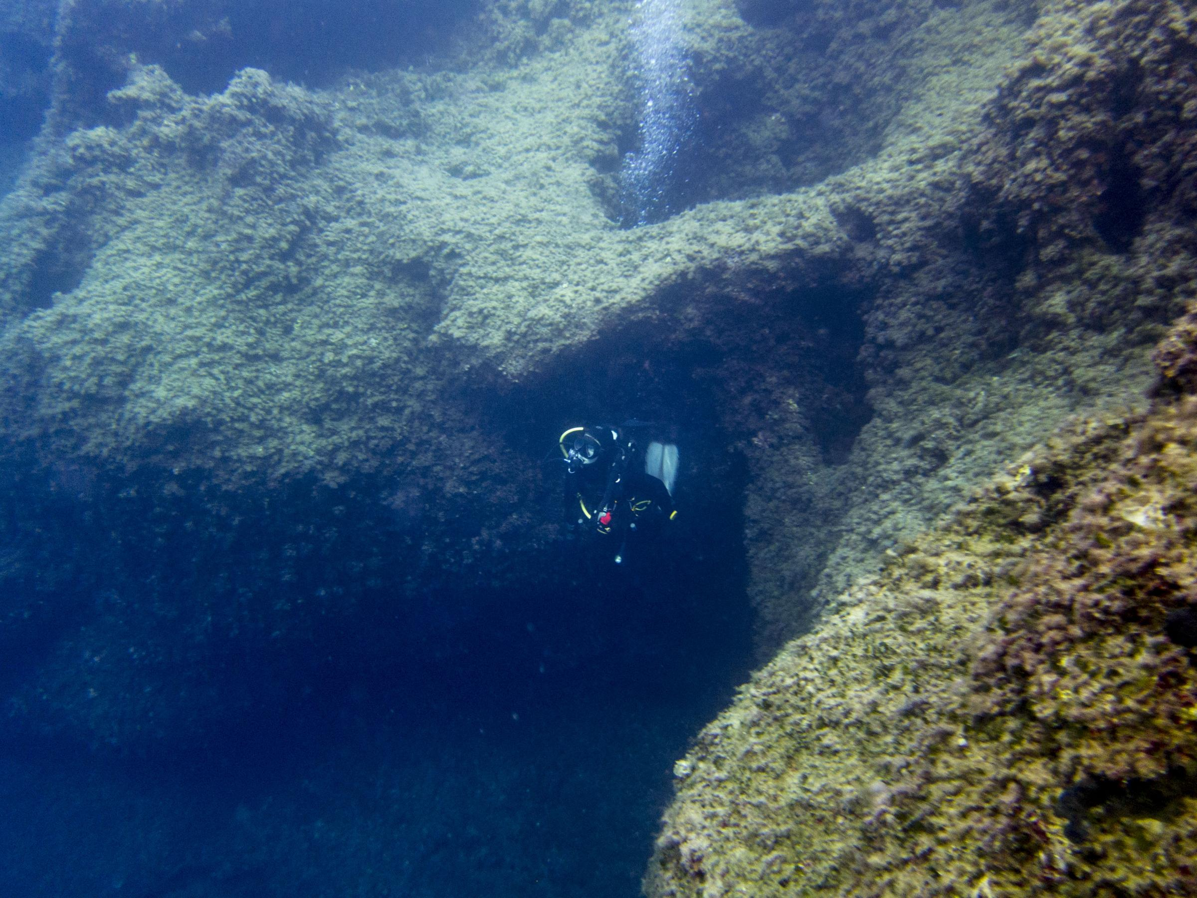 Diver at Cirkewwa