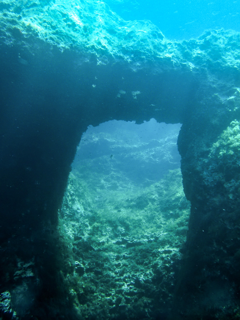 Swim-through arch