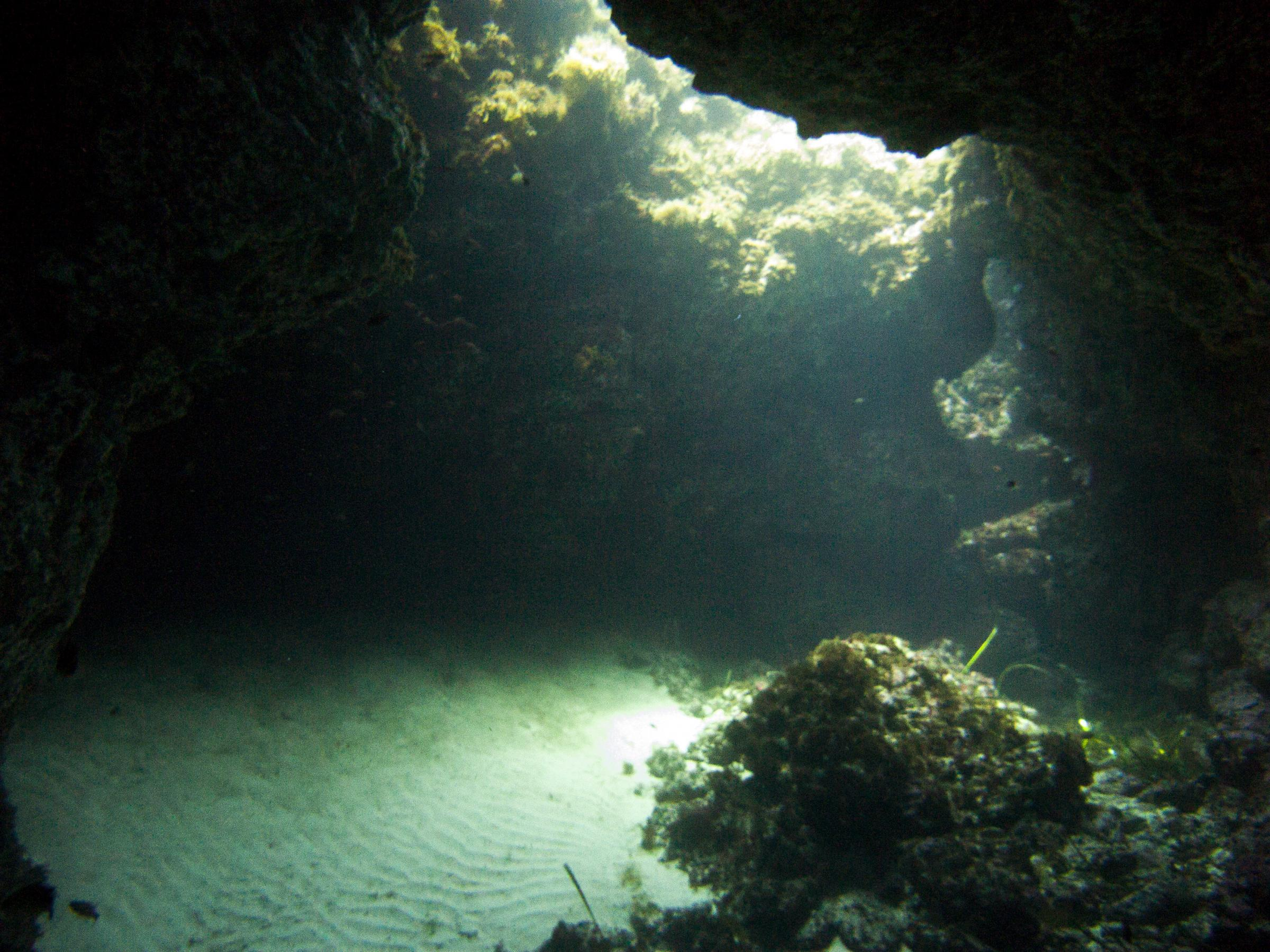 The cave in Finger Reef