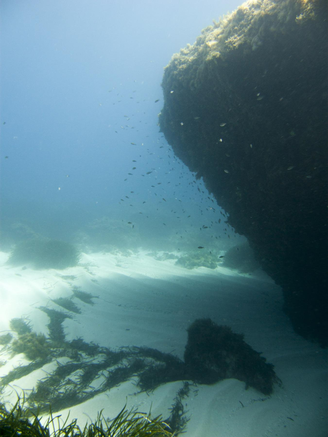 Middle Reef dive site