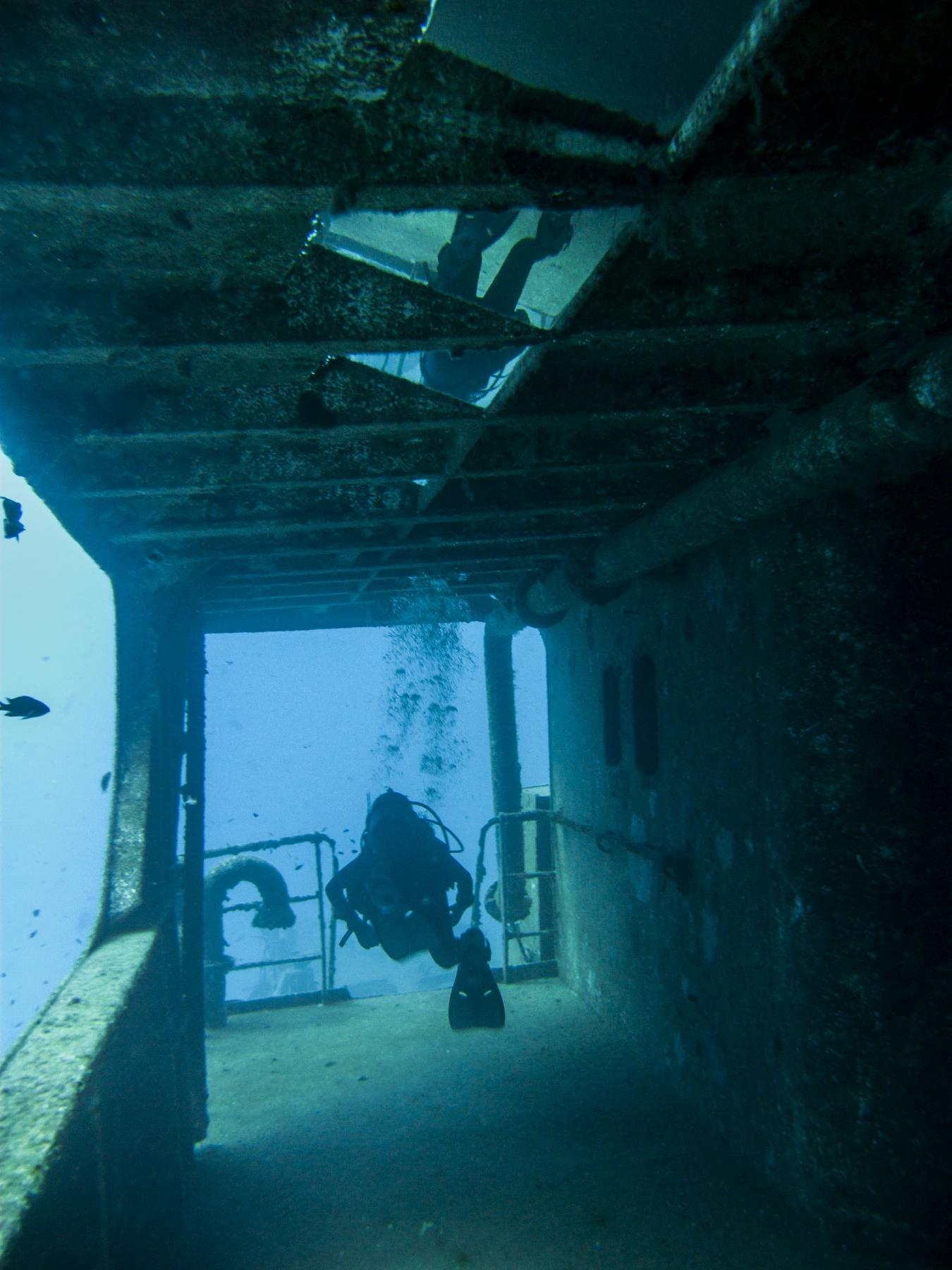 Diver swimming in the side corridor