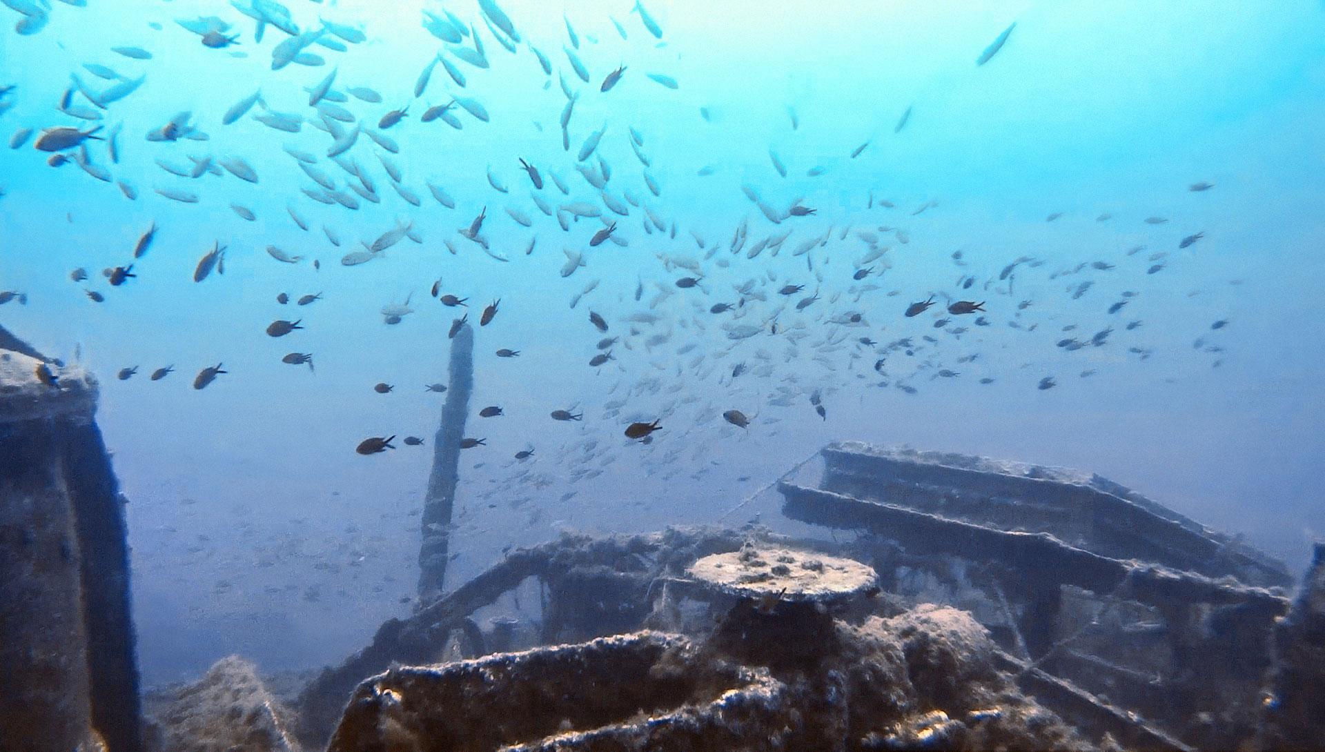 HMS Hellespont wreck