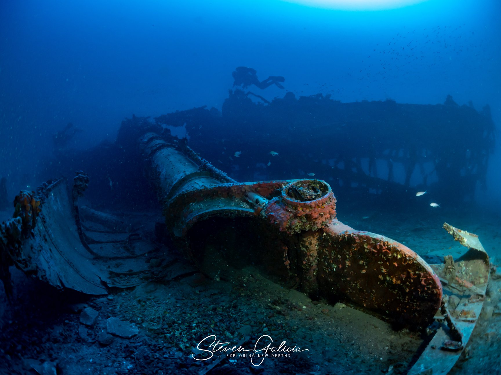 Starboard torpedo tube dislodged from the wreck, torpedo still inside [Steven Galicia]