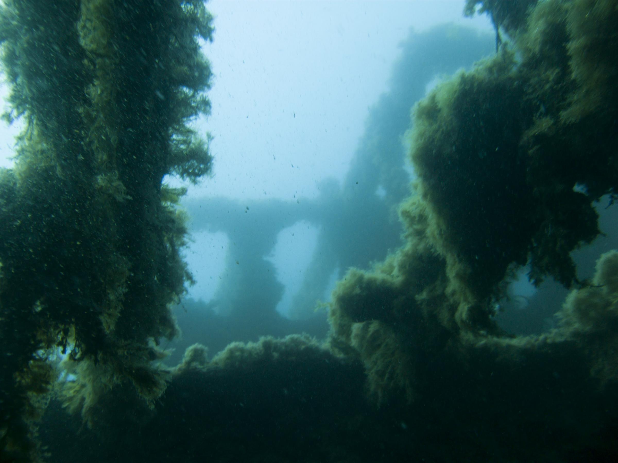 MV Scotscraig