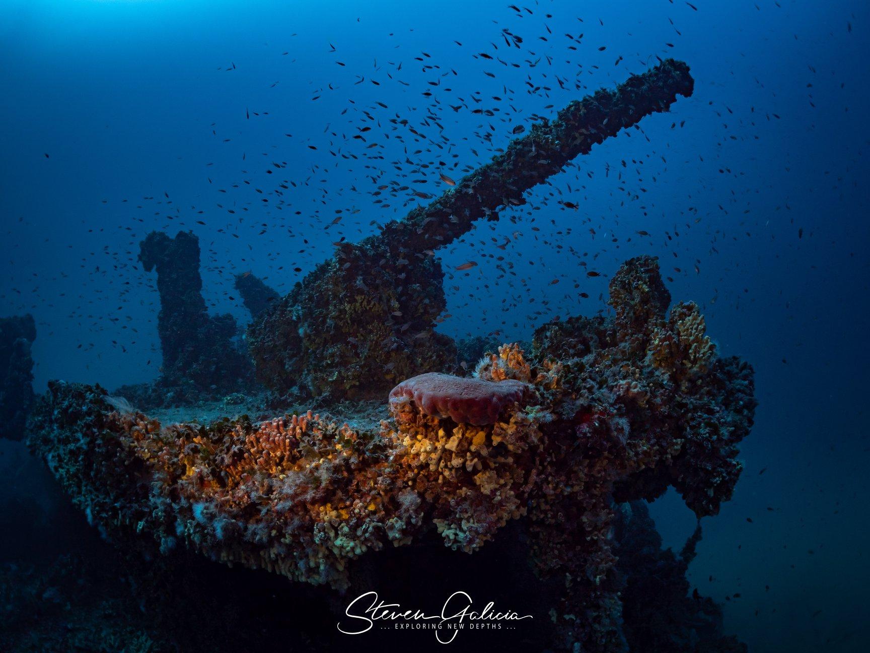HMS Nasturtium, aft gun [Steven Galicia]