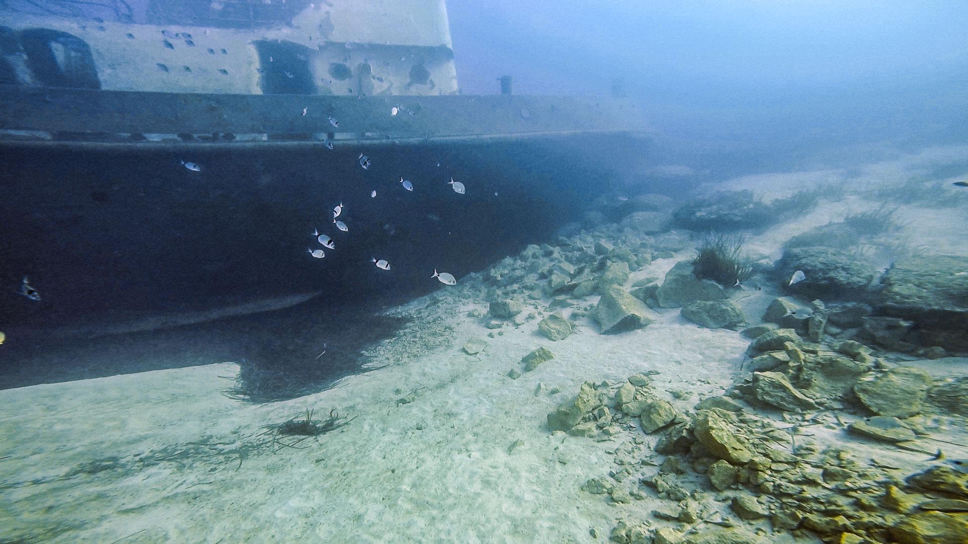 Tug 2 wreck