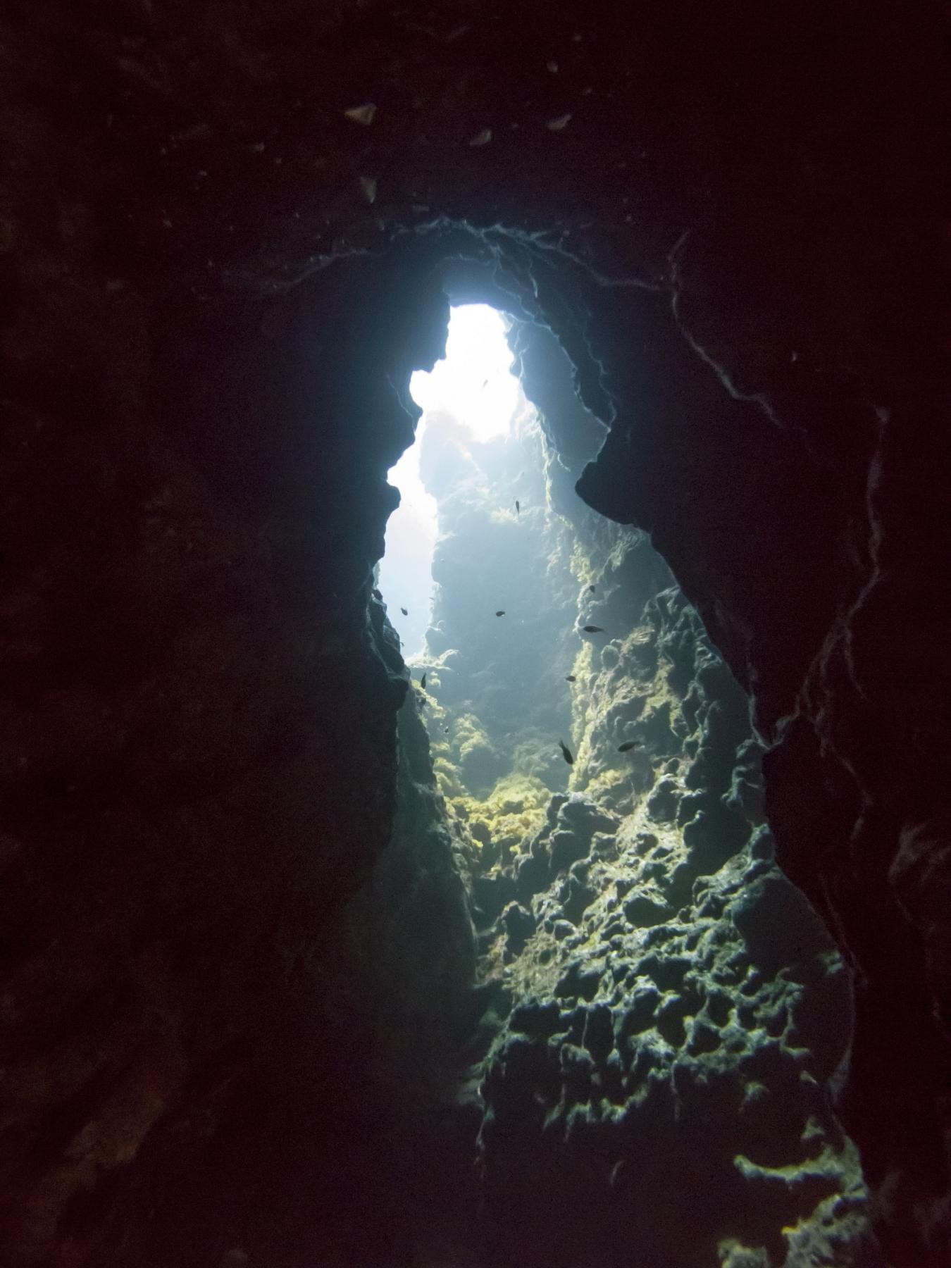 Cave in Coral Gardens