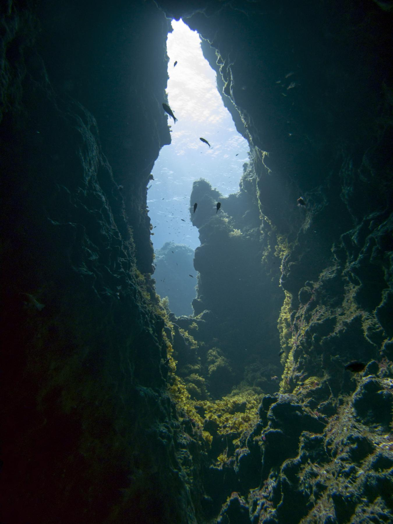 Swim through in Dwejra's Coral Gardens