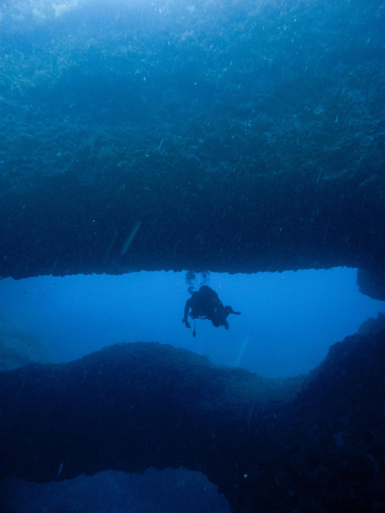 Diver between Double Arch
