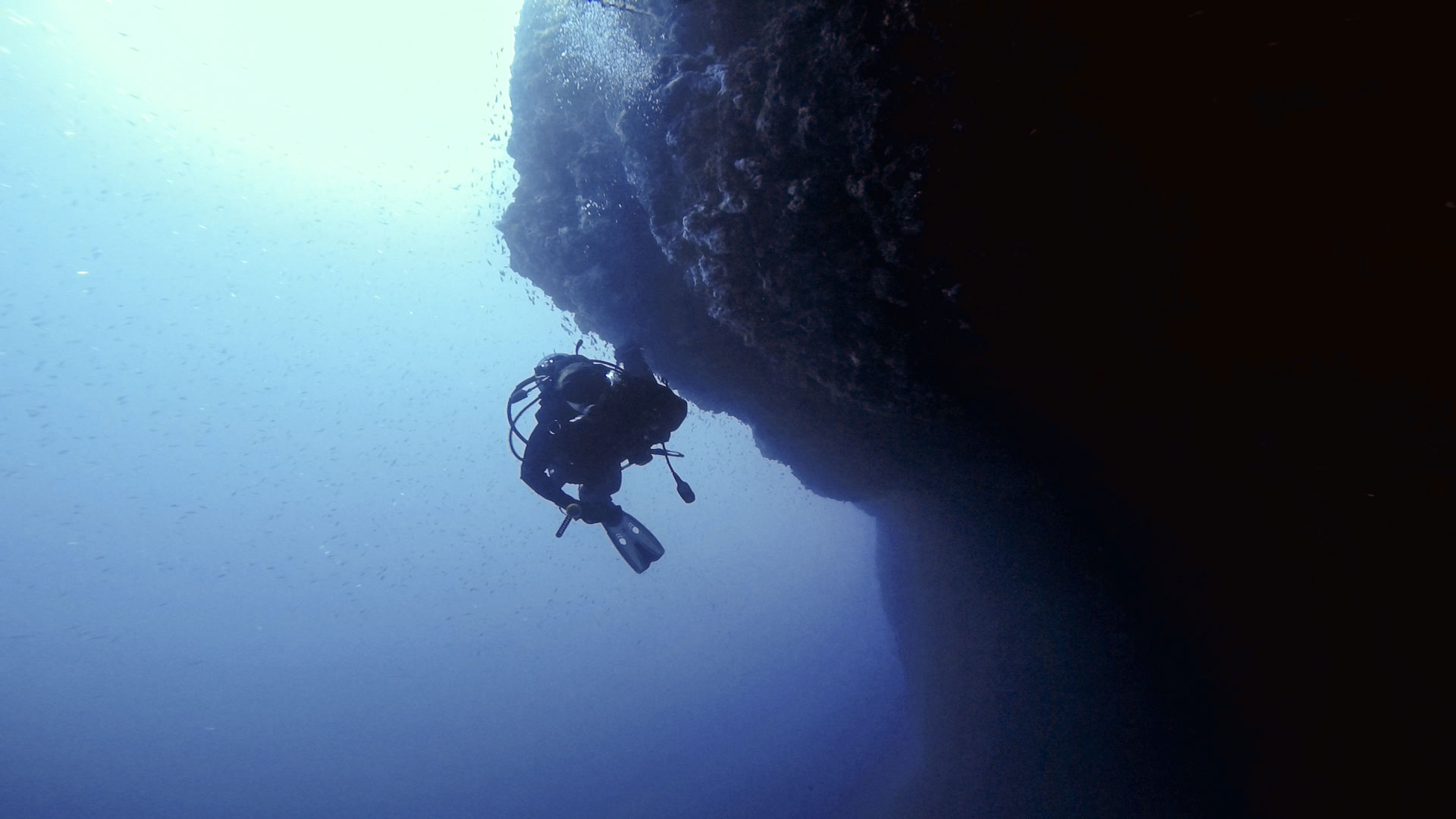 Diver at the wall of Qawra Reef
