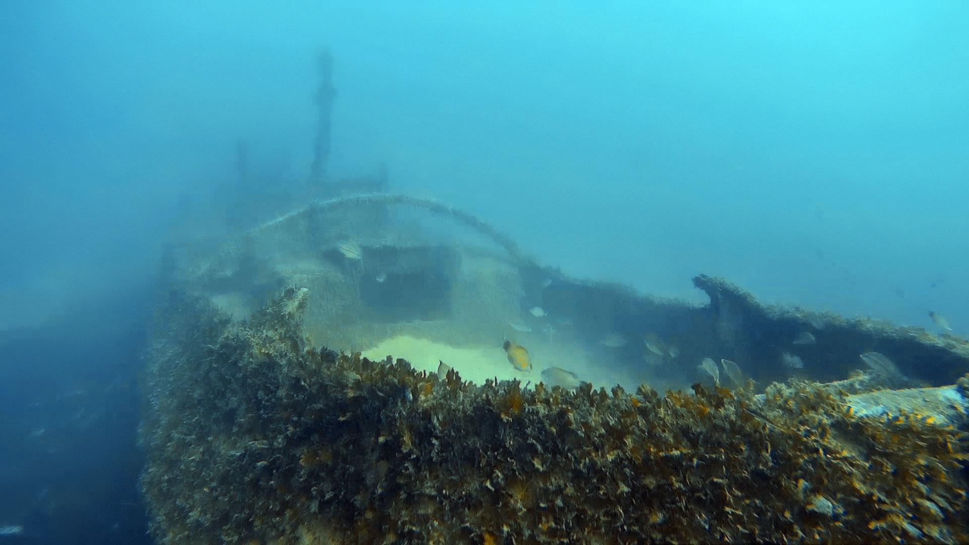 Tugboat 10 wreck in Marsaskala