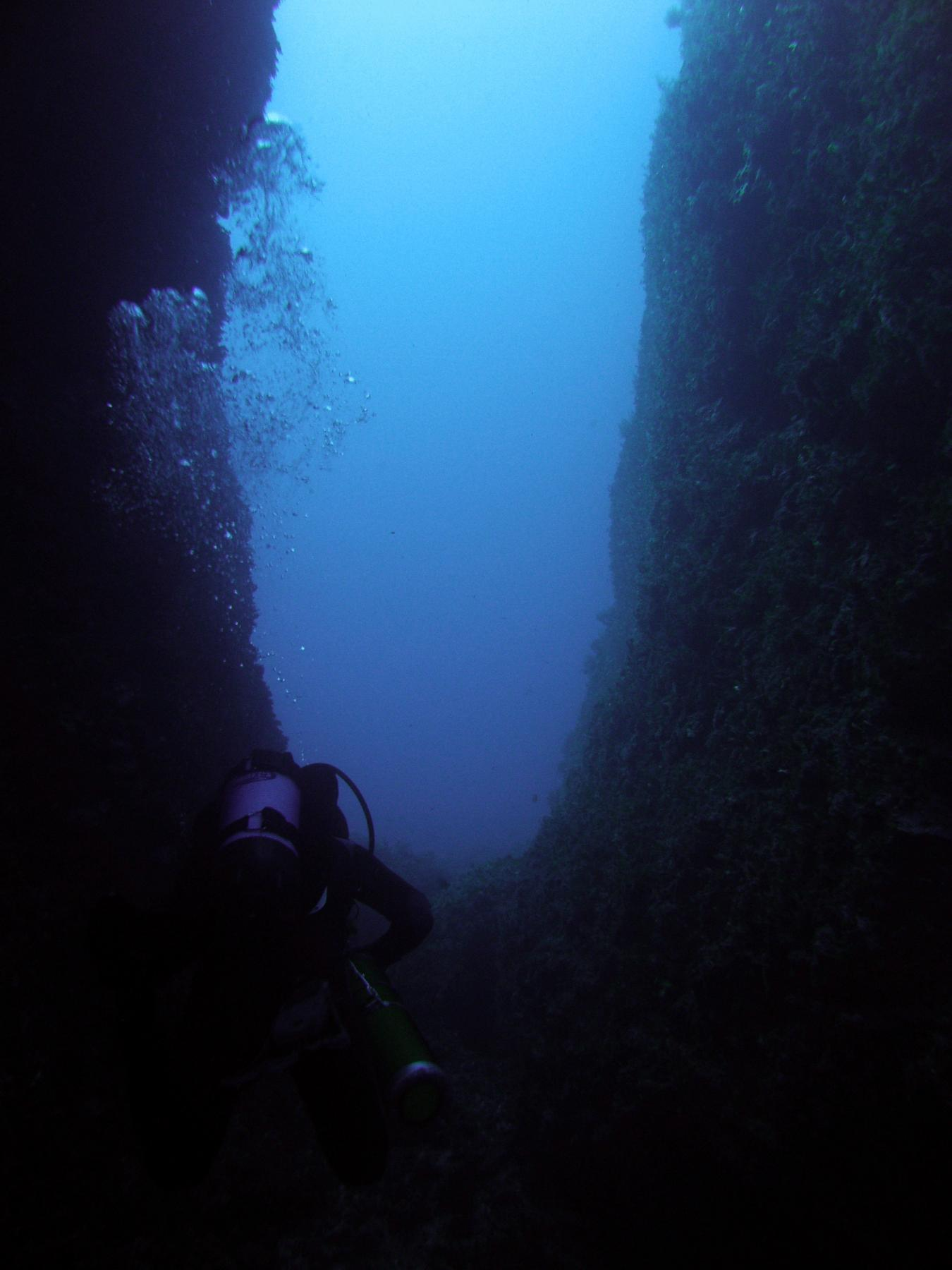 Diver at the Lantern Point