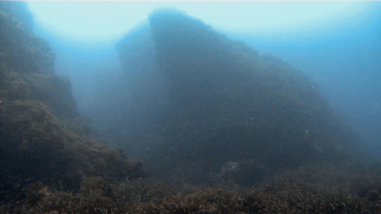 Walls at Delimara South Reef
