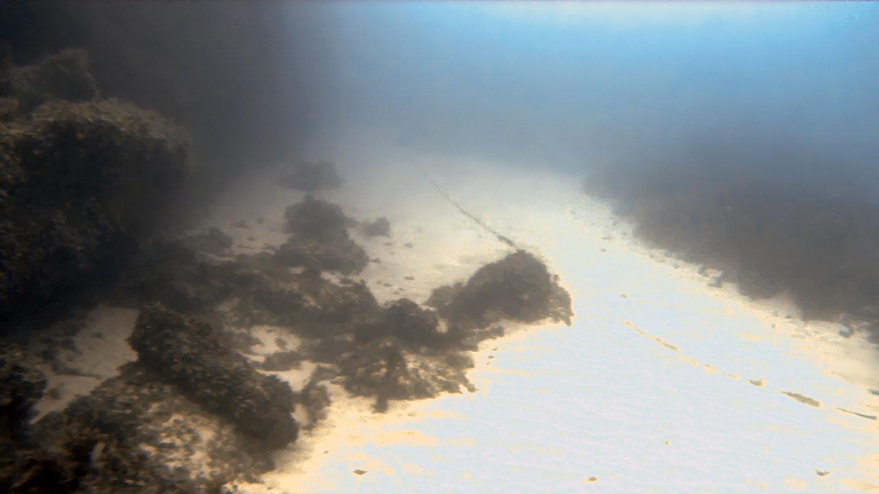 Delimara South Reef
