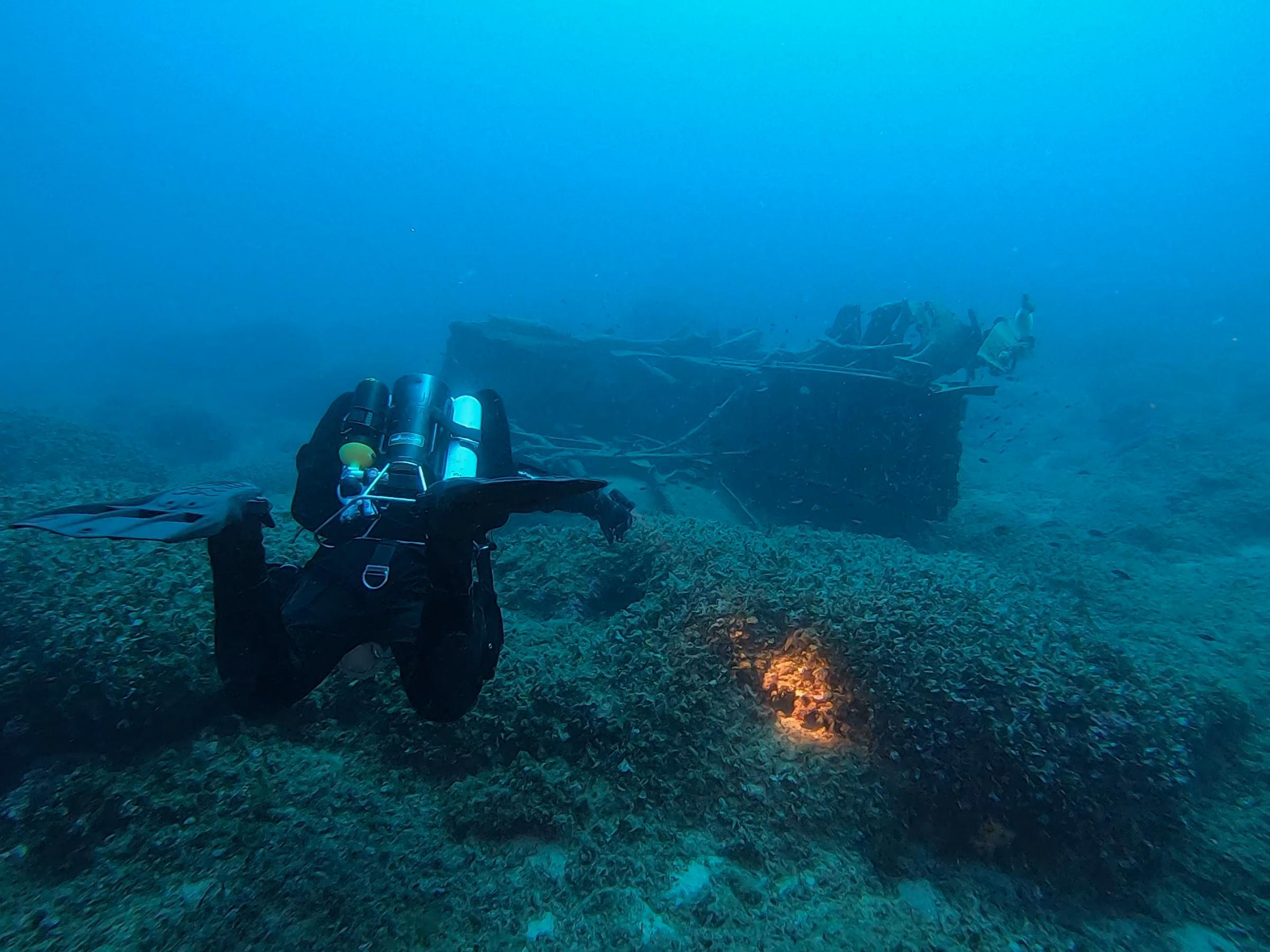 Diver [Adam Sant]