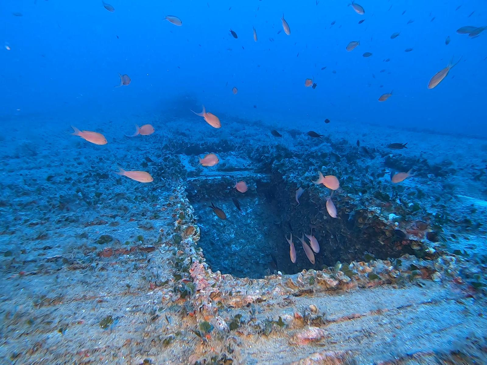 Main hold entrance of the unknown barge wreck [Adam Sant]