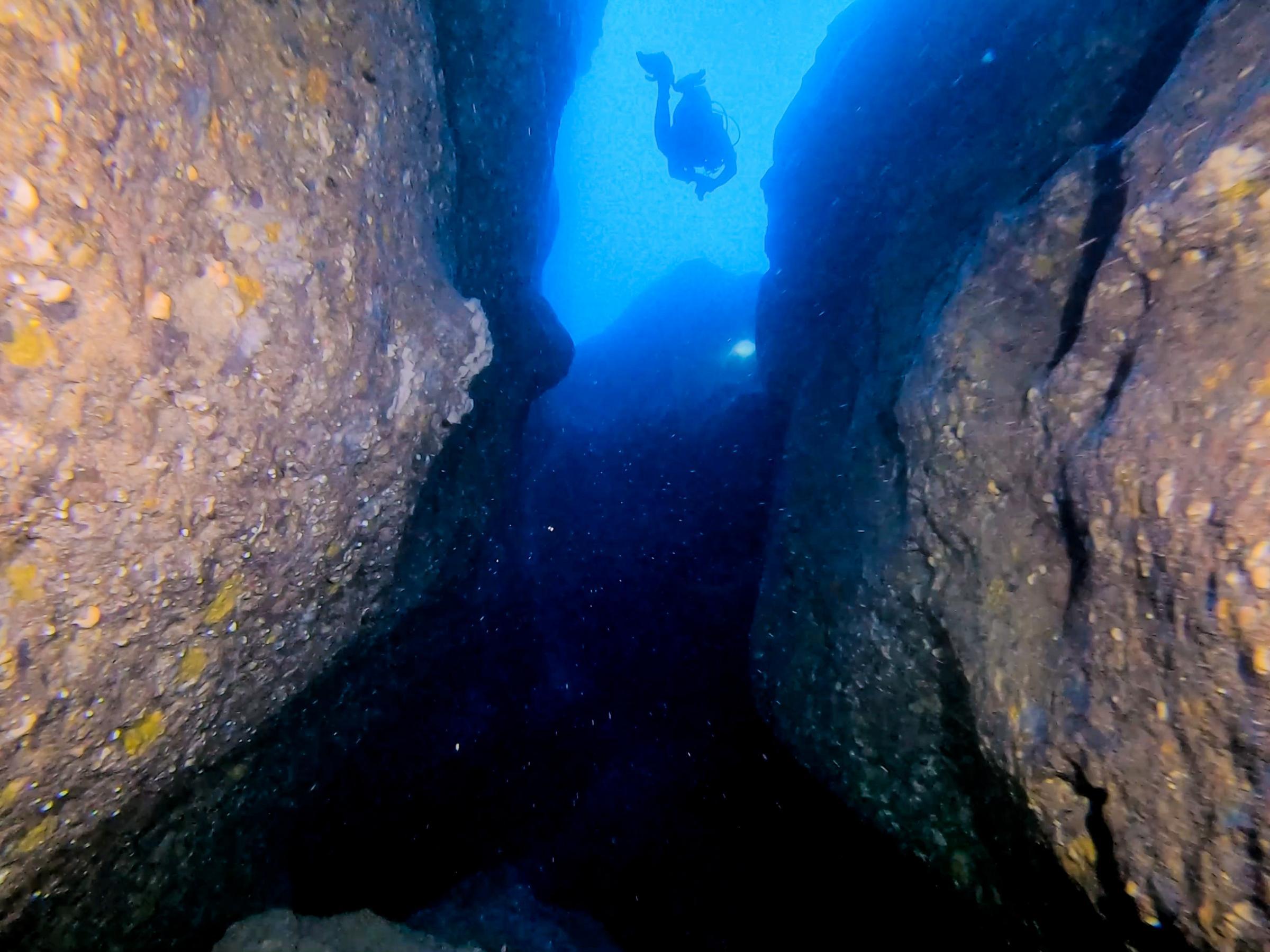 Boulders creating interesting dive paths [Adam Sant]