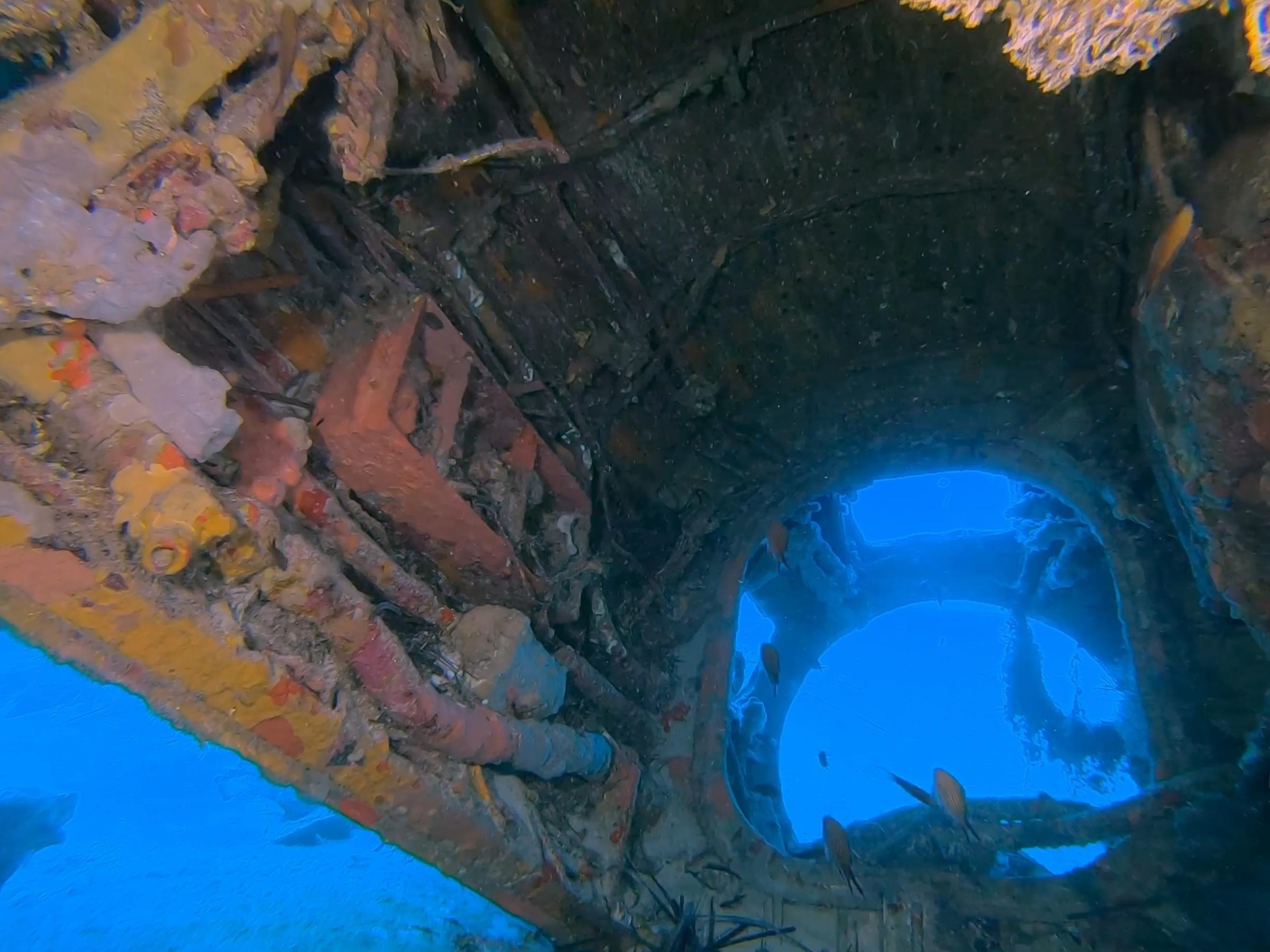 The engine Compartment [Adam Sant]