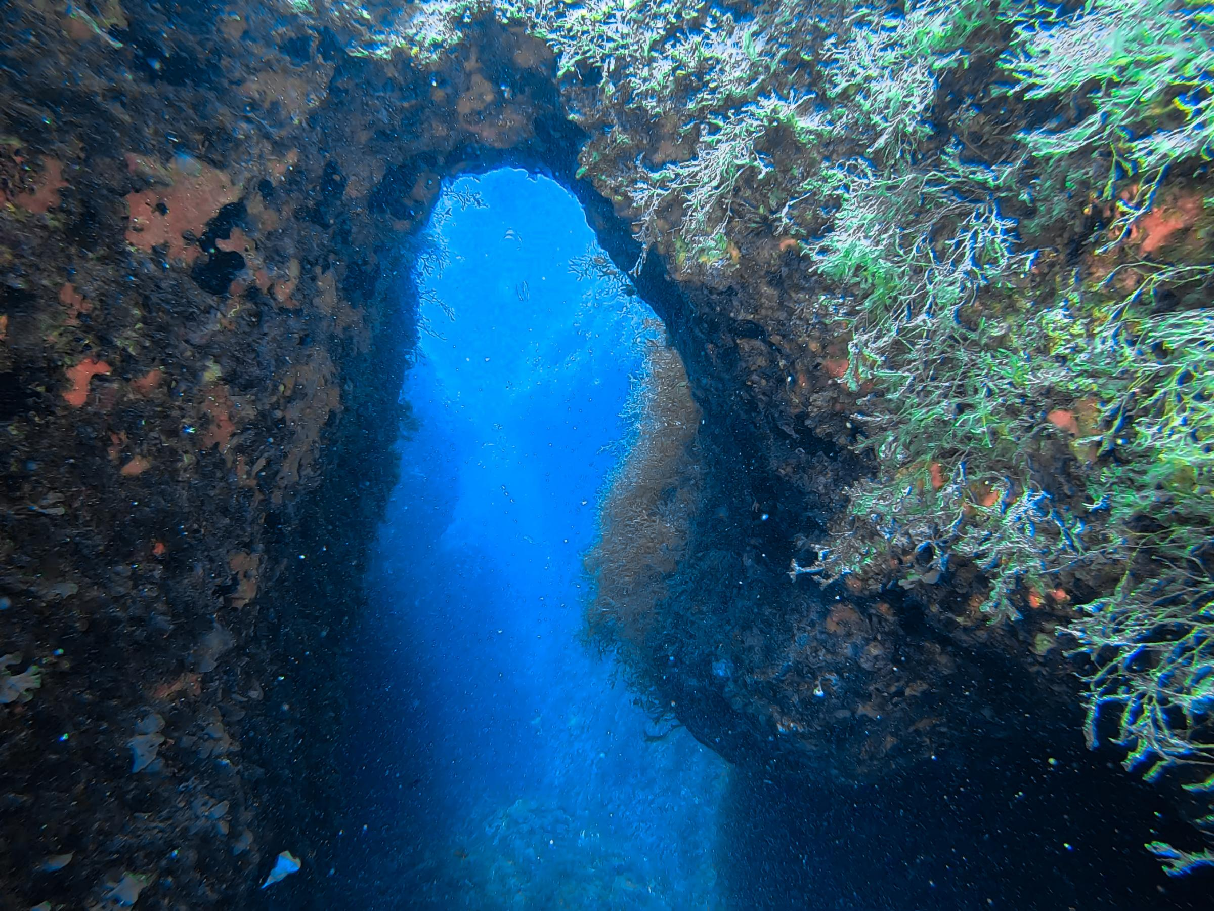 Zurziep Reef tunnels [Adam Sant]