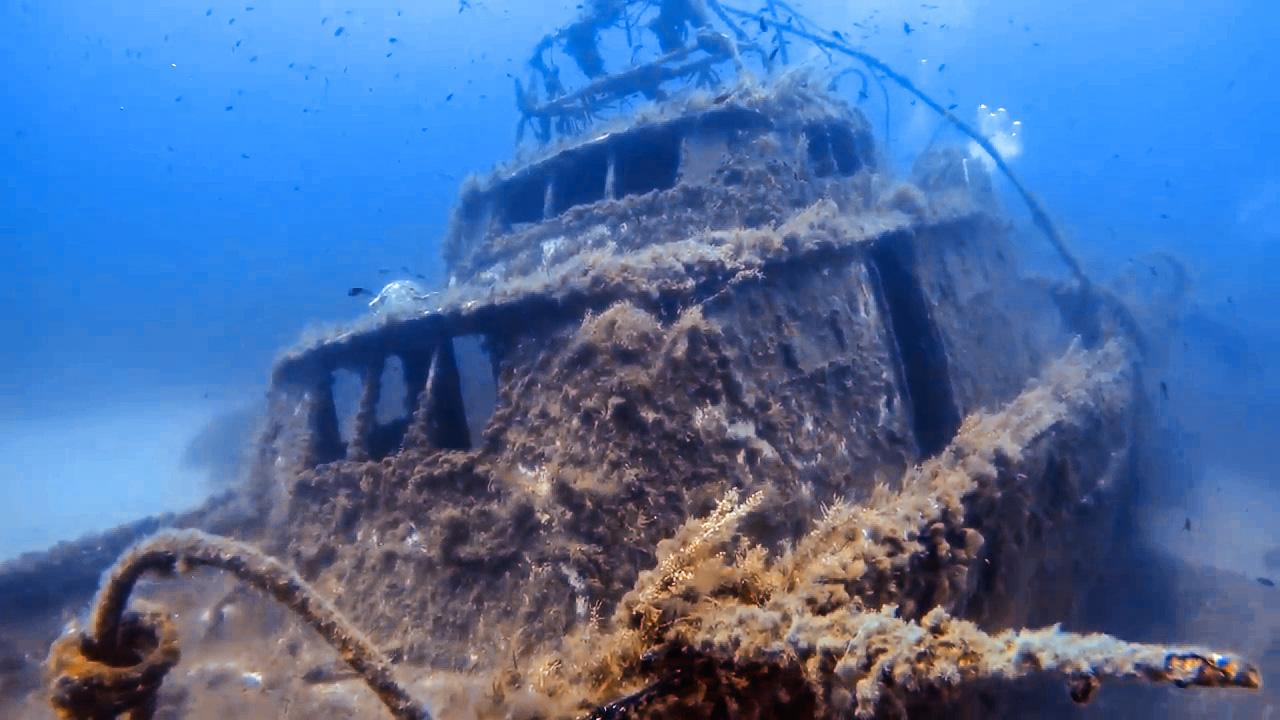 MV Pippo wreck